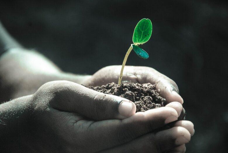 固定マインドセットより成長マインドセットで、前向きに成長していきよう。