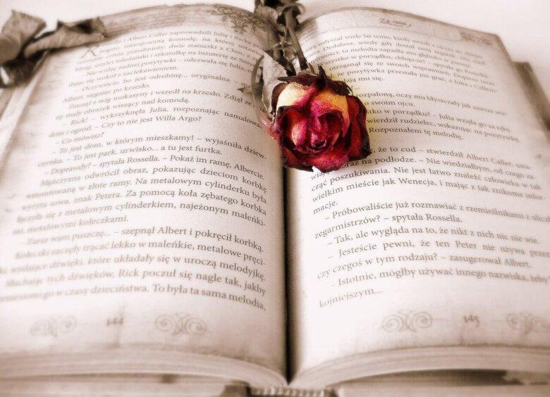 読んで楽しめる、飾って楽しめる洋書。本だってインテリア。飾読のすすめ。