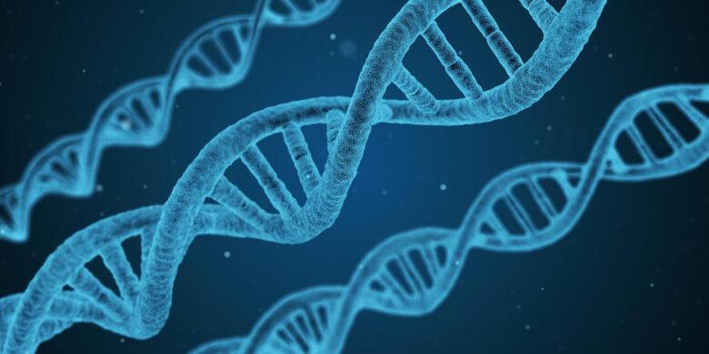 進化心理学ってなんですのん?人の心理は全て進化の観点から説明できる?