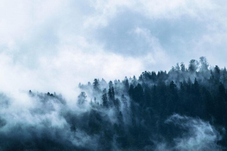 『あつまれどうぶつの森島創造記第38話』はじめての霧と魚釣り大会